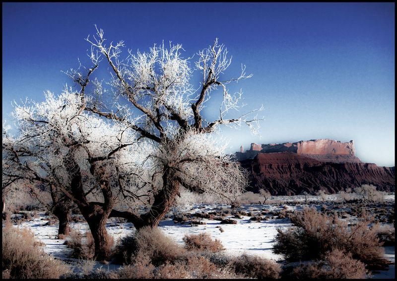 Round-Rock,-Arizona-#3