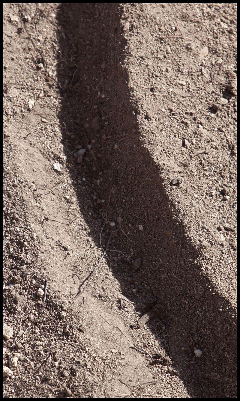 Quinlans-Spiral-Detail-#2