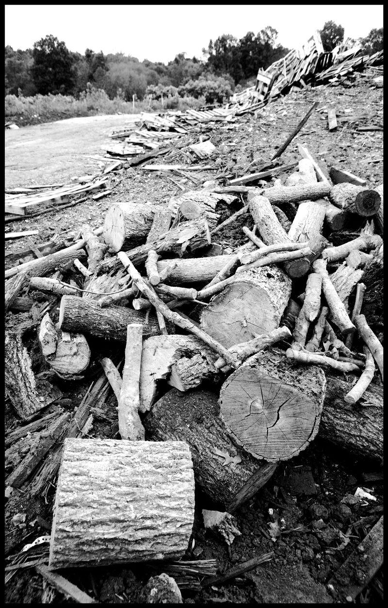 Penske-Wood-At-The-Dump-#2