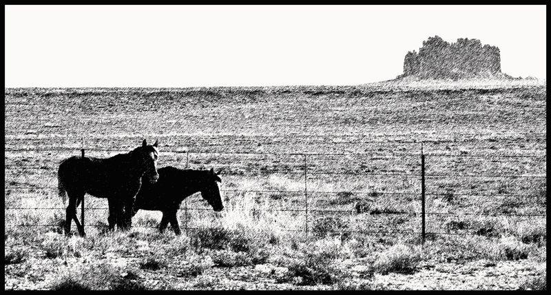 Shiprock-Horse-#3-[GP]