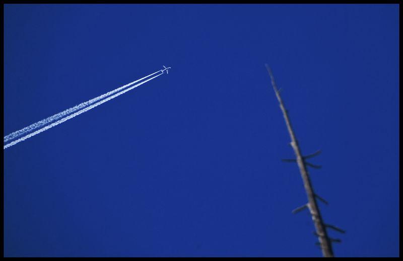Wolf-Creek-Plane-#2