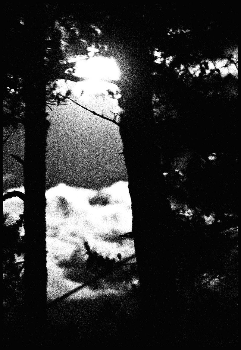 Michael And Chessie's Moon, California