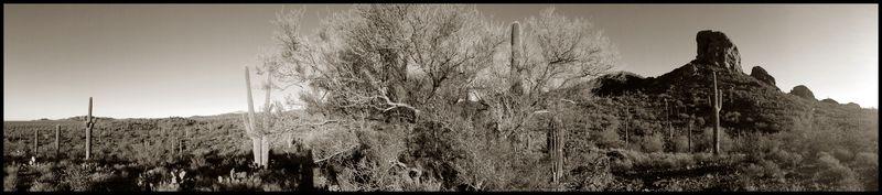 Owl's-Head-Panoramic-#2