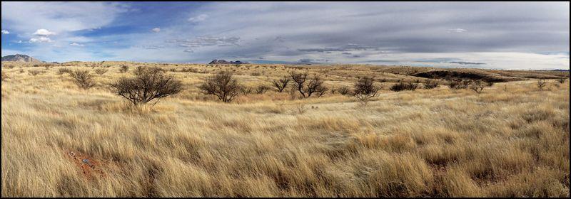 NM-Empire-Ranch-Pano-#1