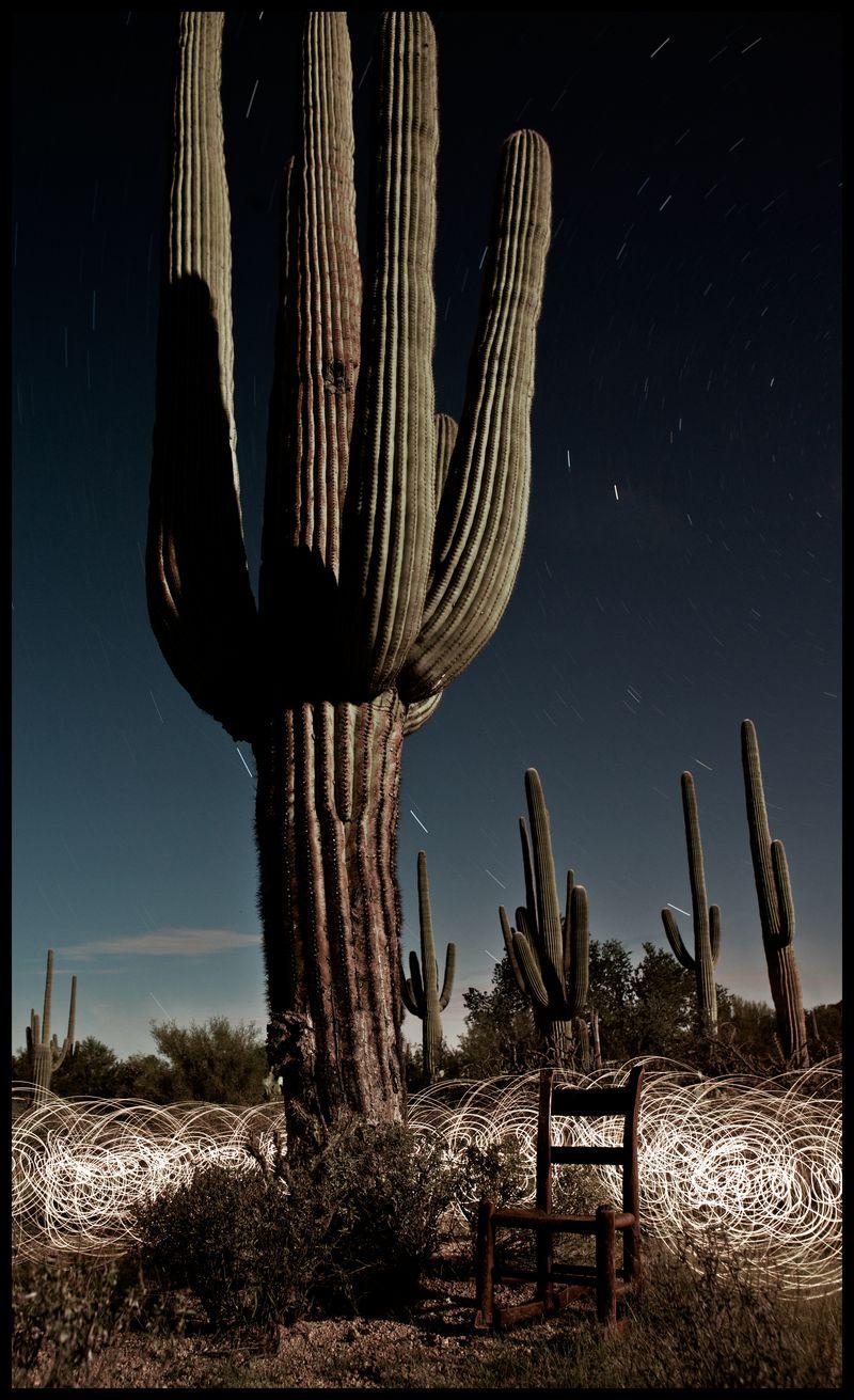 PBRC-Saguaro-West-Night-#1