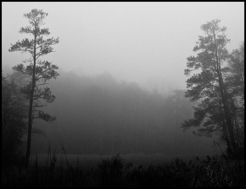 Nameless-Saltwater-Pond-#7