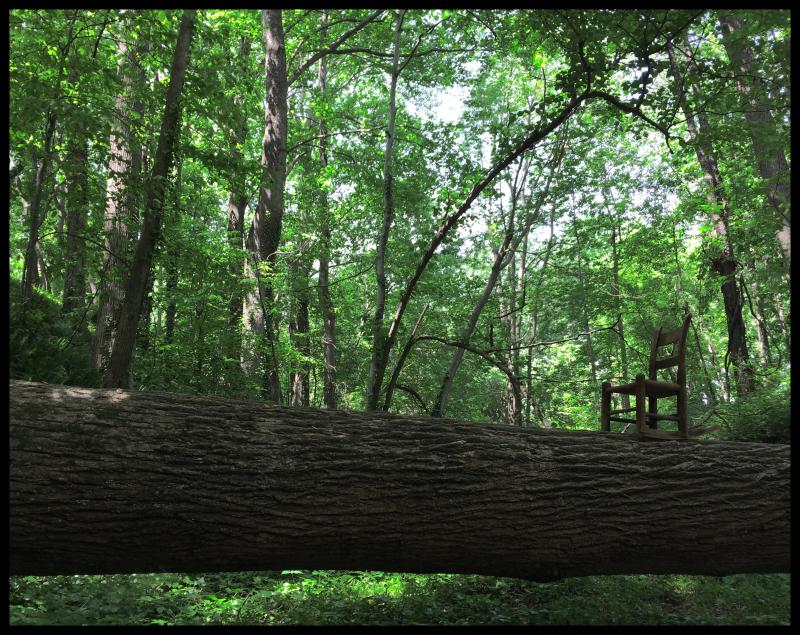 PBRC-NCMA-Art-Park-#17