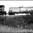 PBRC-Cienega-Creek-#6