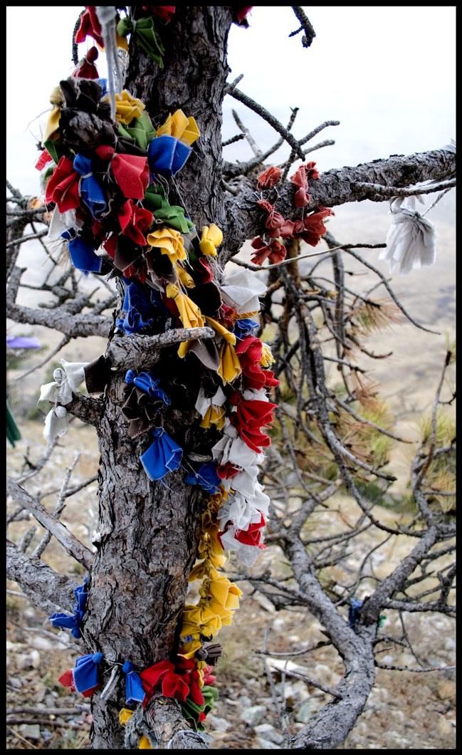 Vertical Prayers, South Dakota