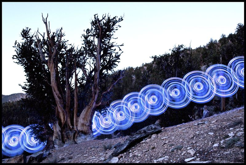 Bristlecone Hoop Dance, California
