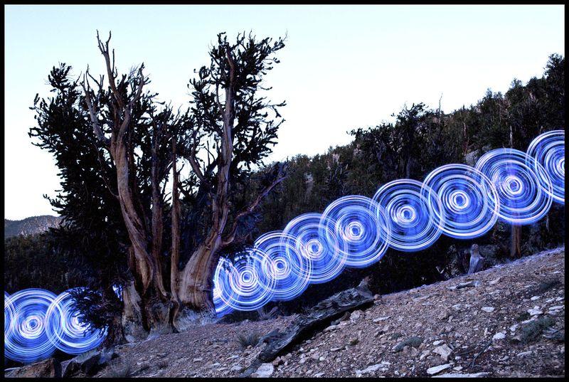 Bristlecone Hoop Dance, California