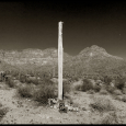 PBRC-Organ-Pipe-NM-#3