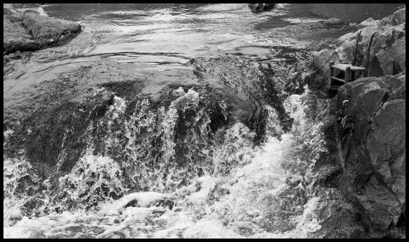 PBRC-Eno-River-Alexis-#17