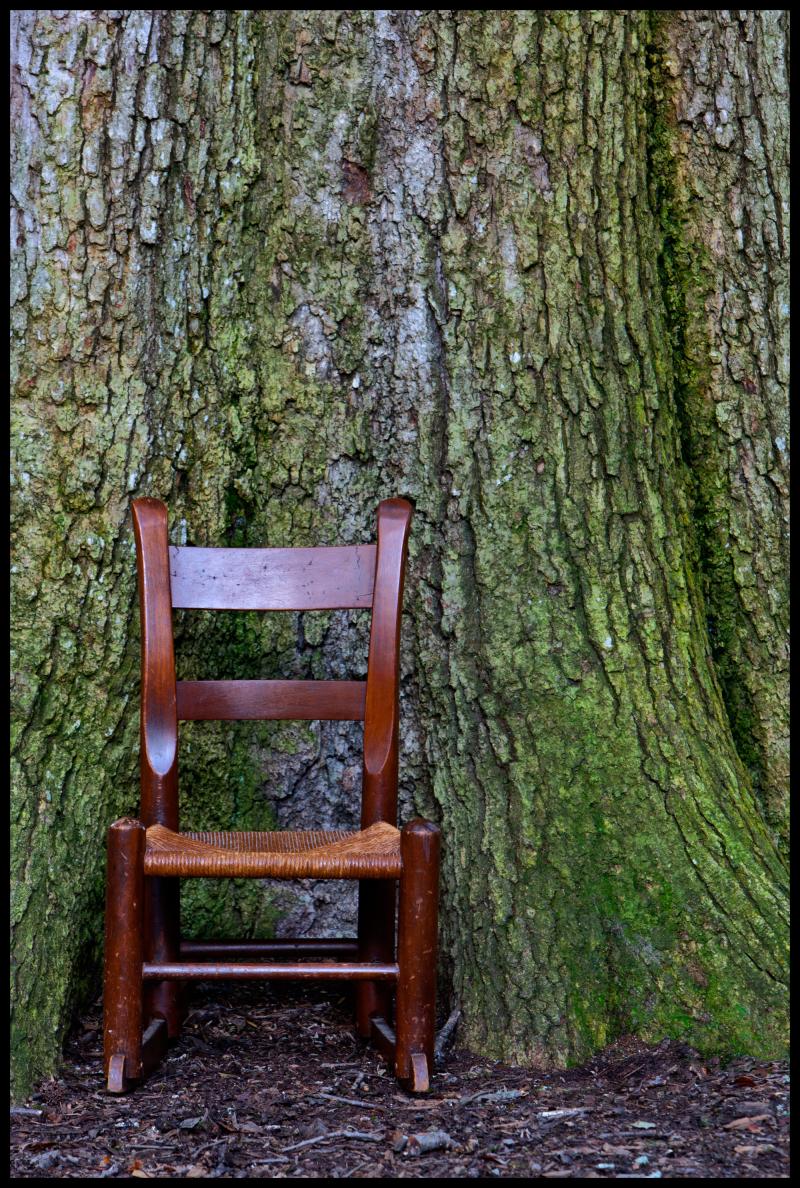 PBRC-Arboretum-Chapel-Hill-#1