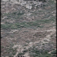 Yarnell-19-Graves-#18