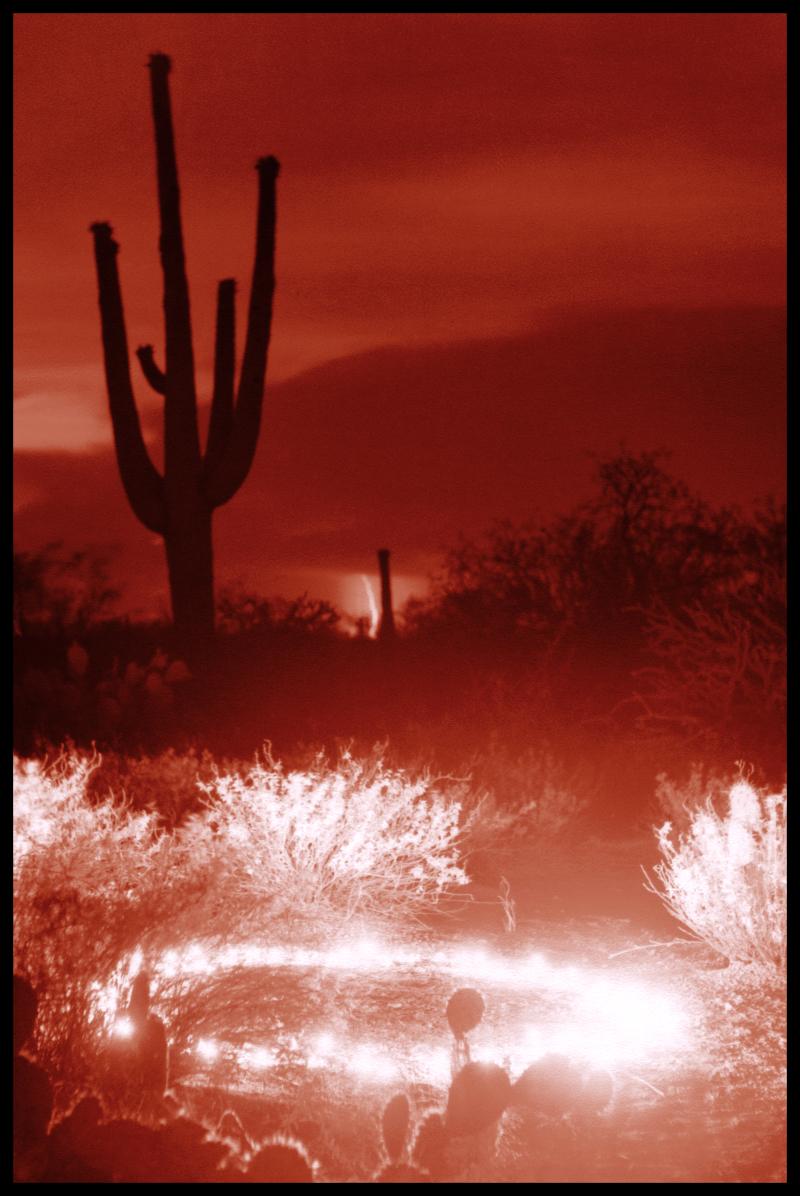 Lightning Fairy Circle  Arizona
