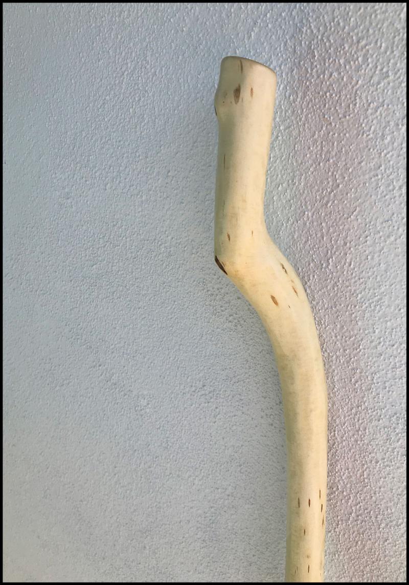 Cottonwood-Detail-#19