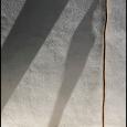 Sagauro-Tall-#19