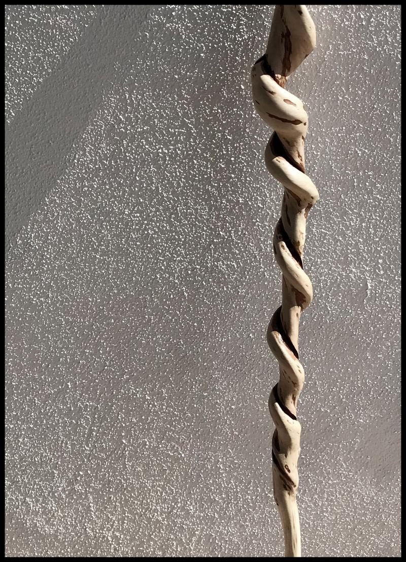 Hornbeam-Spiral-56-#19