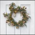 Fulp-Moravian-Flowers-#19