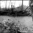 DS-Ararat-River-#19
