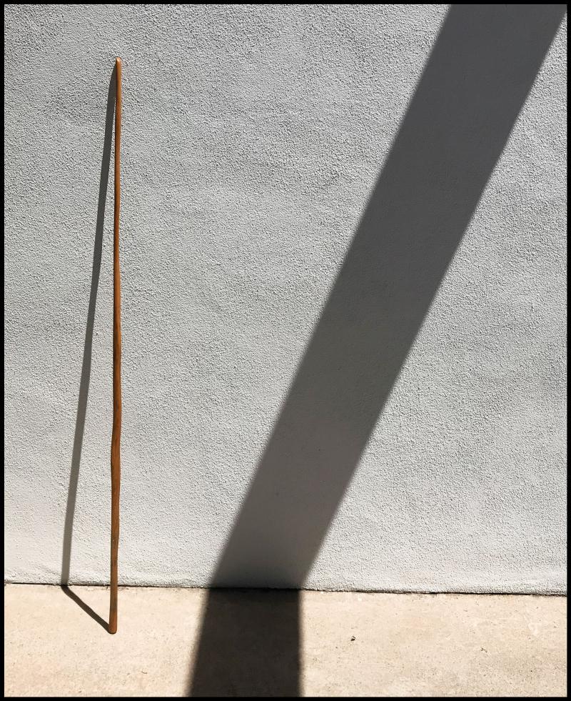 Saguaro-Red-#19A