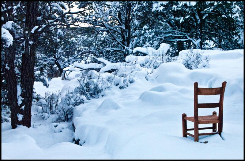 PBRC-Coconino-Elk-&-Snow-#19