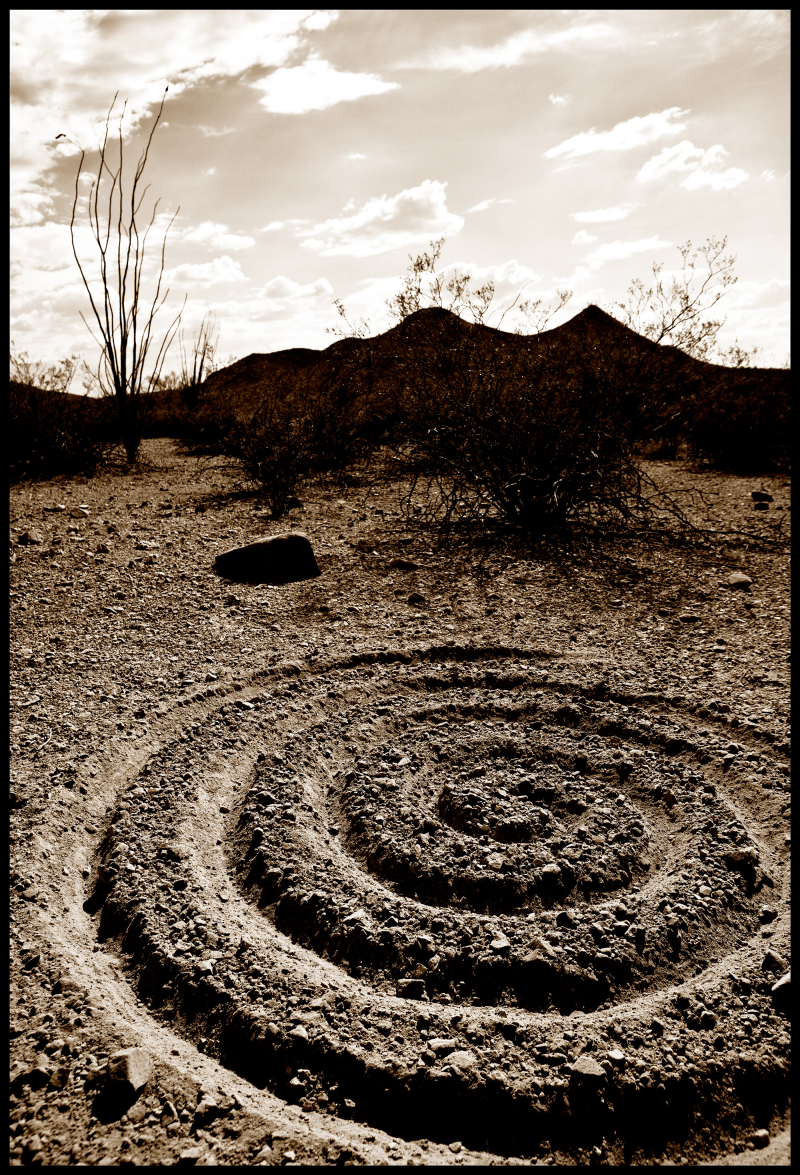 Spiral-in-the-Ironwood-#20