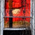 Red-Window-Eden-#20