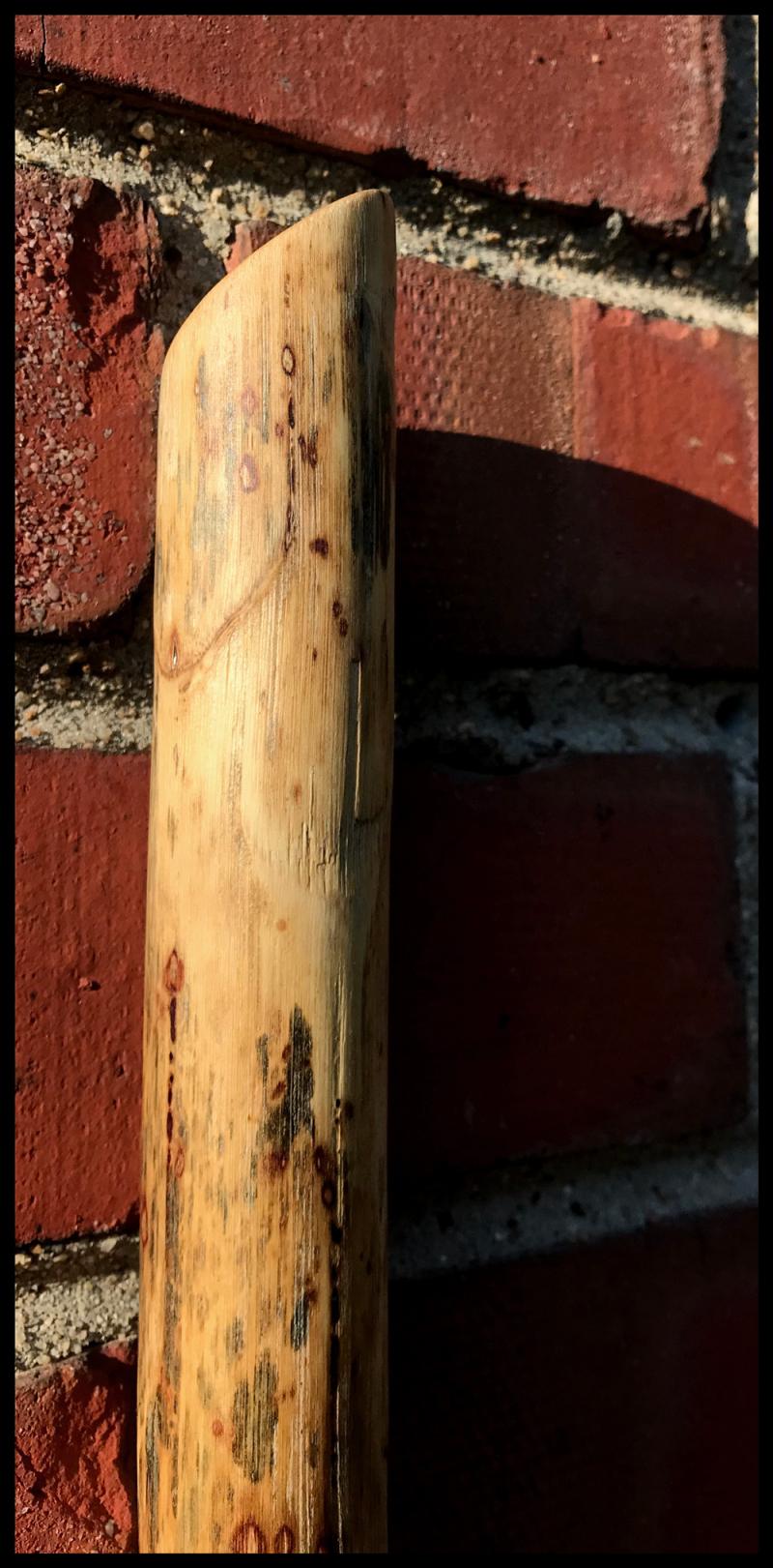 Peter-Saum-Jr-Detail-Three-#21