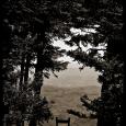 PBRC-Roan-Mountain-#21
