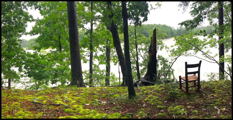 PBRC-Farnham-Creek-Moss-#21